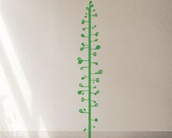 measuring plant height chart