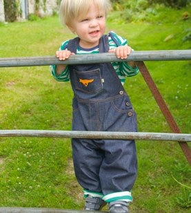 Mr Fox Eco-Denim Dungies by Frugi