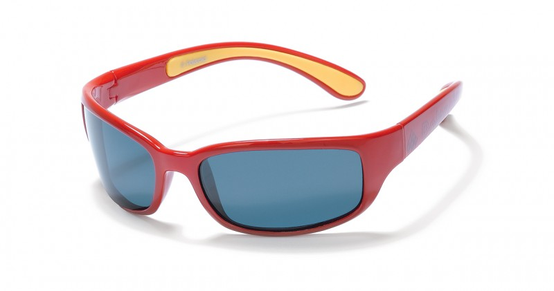 Travel Polaroid sunglasses