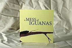 a mess of iguanas card