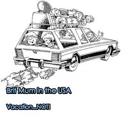 Brit Mum in the USA. Vacation Not!