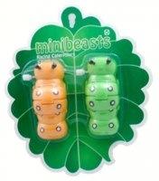 Minibeasts - Racing Caterpillar