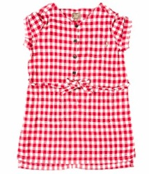 Chilli Red Gingham Dress by Kidscase