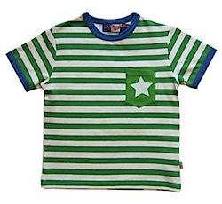 Molo Rasmus Fern Stripe and Star T-shirt